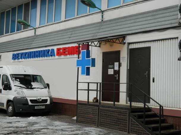 Ветеринарная клиника в Чертаново.
